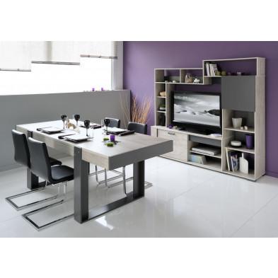 Ensemble meuble TV contemporain marron L. 117 x P. 40 x H. 157 cm Collection Berkers