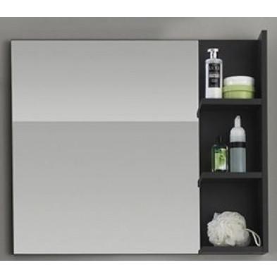 Miroir de salle de bain avec 3 étagères coloris gris L. 79 x P. 14 x H. 67 cm collection Oostvoorne